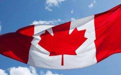 2020加拿大留学时间规划和申请流程(详细)