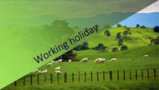 新西兰working holiday申请材料「详细清单」