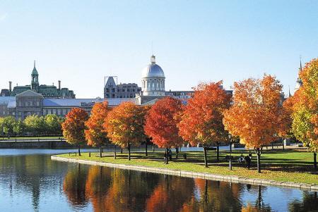2020加拿大留学新政策「最新」