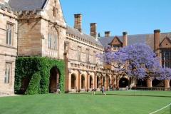 澳大利亚莫纳什大学一年学费多少?