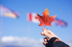 国内冷门加拿大却热门的专业