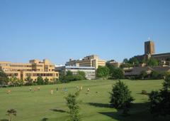 杜克大学录取率是多少?(申请录取率和转学录取率)