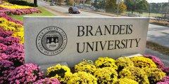 美国布兰迪斯大学算名校吗?(全美前100的专业有哪些)