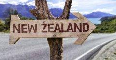 新西兰8所大学世界排名(新西兰八大名校)