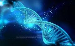 生物技术专业介绍及就业前景